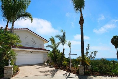 San Clemente Single Family Home For Sale: 1810 Arriba Linda