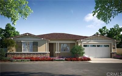 Encinitas Single Family Home For Sale: 1145 Laurel Cove Lane