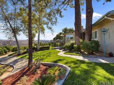 Redlands Single Family Home For Sale: 31307 Alta Vista Drive