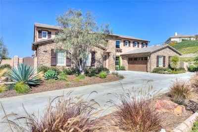 San Juan Capistrano Single Family Home Active Under Contract: 31831 Paseo Navarra