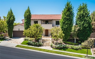 Orange County Single Family Home For Sale: 51 Grandview