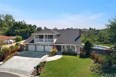Laguna Hills CA Single Family Home For Sale: $1,495,000