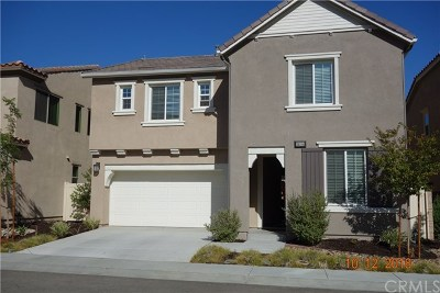 Lake Elsinore Single Family Home For Sale: 24154 E Lavendar Drive