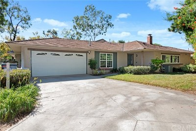 Irvine Single Family Home For Sale: 17201 Chestnut