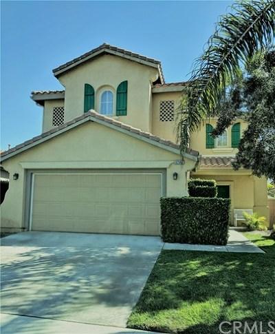 San Juan Capistrano Single Family Home For Sale: 32562 Via Los Santos