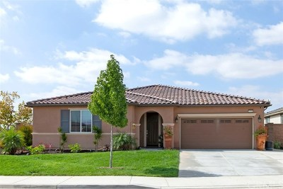 Lake Elsinore Single Family Home For Sale: 53209 Red Leaf Court