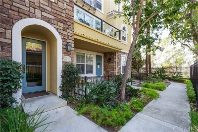 Irvine Condo/Townhouse For Sale: 1006 Terra Bella