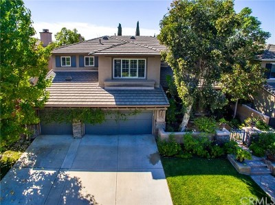 Mission Viejo Single Family Home For Sale: 22531 Parkfield