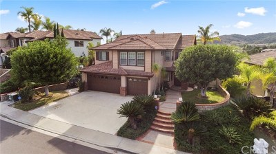 Trabuco Canyon Single Family Home For Sale: 5 Gingham Street