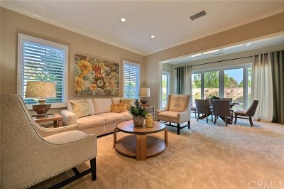Orange County Single Family Home For Sale: 56 Wild Horse