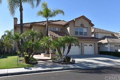 Mission Viejo Single Family Home For Sale: 22661 White Oaks