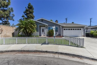 Costa Mesa Single Family Home For Sale: 2136 Raleigh Avenue