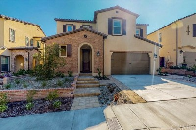 Mission Viejo Single Family Home For Sale: 15 Cielo Arroyo
