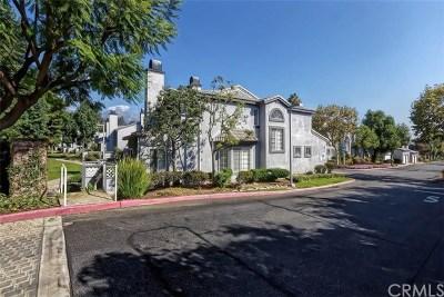 Rancho Cucamonga Condo/Townhouse For Sale: 8284 Mondavi Place