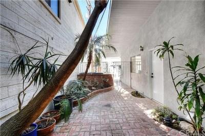 Newport Beach Rental For Rent: 721 Jasmine Avenue