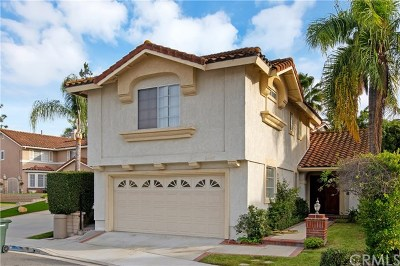 Laguna Niguel Single Family Home For Sale: 24402 Nugget Falls Lane