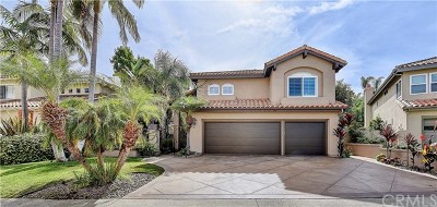Laguna Niguel Single Family Home For Sale: 23 Bernay