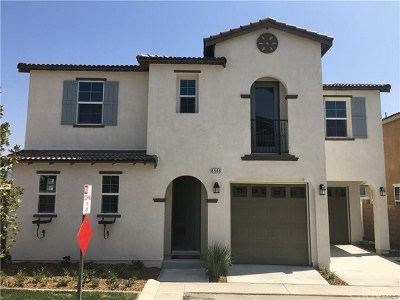 Chino Single Family Home For Sale: 6586 Mogano Dr