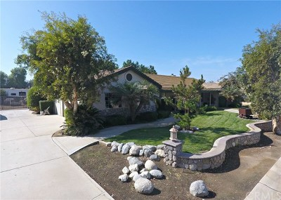 Norco Single Family Home For Sale: 382 Greentree Road