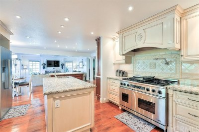 San Juan Capistrano Single Family Home For Sale: 29661 Monarch Drive