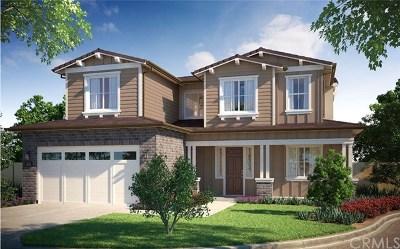 Encinitas Single Family Home For Sale: 1121 Laurel Cove Lane