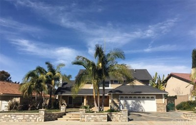 Mission Viejo Single Family Home For Sale: 24631 Saturna Drive