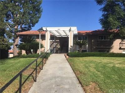 Laguna Woods Condo/Townhouse For Sale: 3111 Via Serena S #B