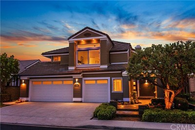 Mission Viejo Single Family Home For Auction: 28871 Walnut