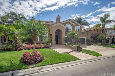 Huntington Beach Single Family Home For Sale: 6902 Turf Drive