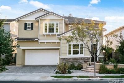 San Clemente Single Family Home For Sale: 1218 Vista Jardin