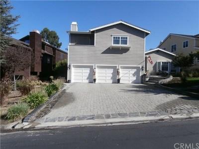 Coto De Caza Single Family Home For Sale: 31961 Via Pavo Real