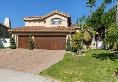 San Clemente Single Family Home For Sale: 1616 Via Calendula
