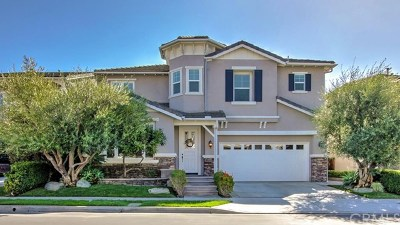 San Clemente Single Family Home For Sale: 2009 Costero Hermoso