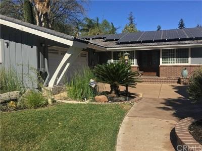 Northridge Single Family Home For Sale: 17311 Knapp Street