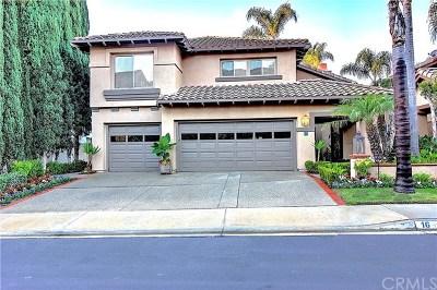 Laguna Niguel Single Family Home For Sale: 16 Via Vetti