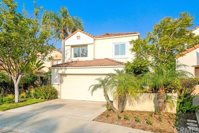 San Clemente Condo/Townhouse For Sale: 103 Calle Sol