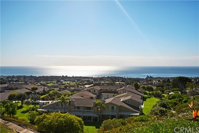 San Clemente Single Family Home For Sale: 501 Avenida Del Verdor
