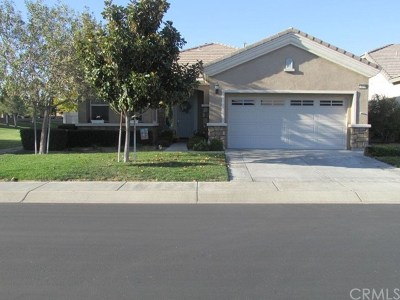 Apple Valley Single Family Home For Sale: 19414 Verbena Street