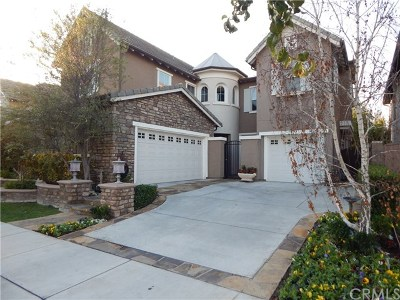 Tustin Single Family Home For Sale: 1043 Hudson Drive
