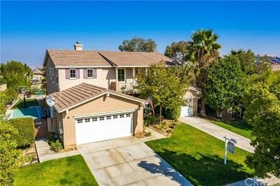 Corona Single Family Home For Sale: 1665 Camino Largo Street