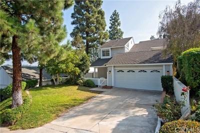 Anaheim Hills Single Family Home For Sale: 6093 E Brighton Lane