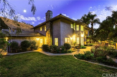 San Juan Capistrano Single Family Home For Sale: 29661 Monarch Drive