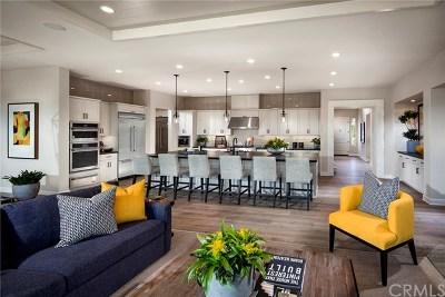 Rancho Mission Viejo Single Family Home For Sale: 29 Medano Street Street