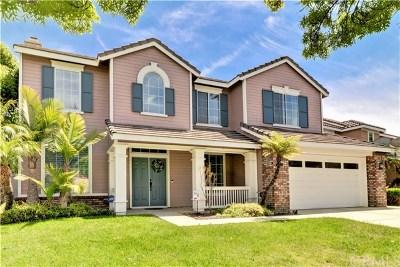 Corona Single Family Home For Sale: 741 Valdosta Circle