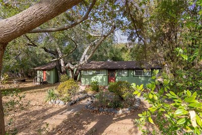 Single Family Home For Sale: 28815 Modjeska Canyon Road