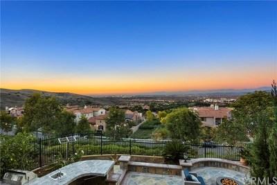 Irvine Single Family Home For Sale: 27 Momento