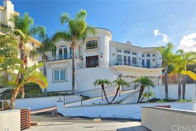 North Tustin Single Family Home For Sale: 12311 Circula Panorama