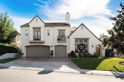 Coto De Caza Single Family Home For Sale: 10 Mackenzie Lane