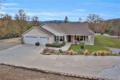 Ahwahnee Single Family Home For Sale: 46526 Wallu Lane