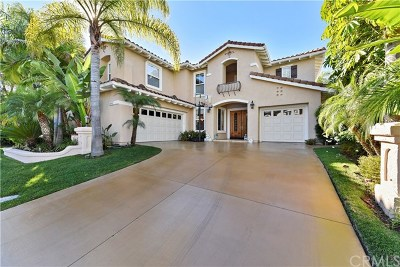 Laguna Niguel Single Family Home For Sale: 28661 Point Loma